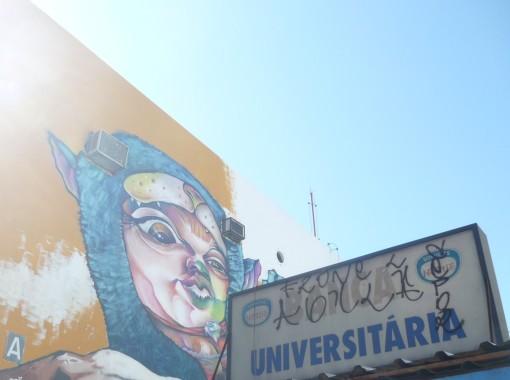 Muros de Brasília - photo by Mamcasz