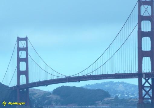 ponte-04